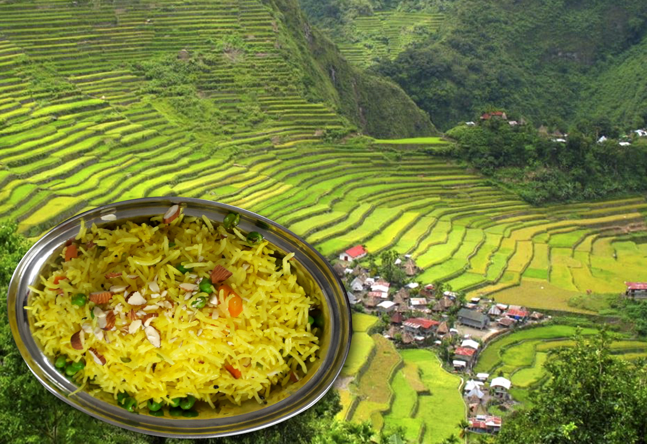 Rice is one of the most important crop in whole Asia